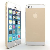 Apple iPhone 6 16GB Gold MG492RU/A